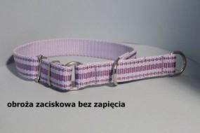 Obroża zaciskowa dla psa bez zapięcia 25mm - HappyHusky Marzena Pałka Kraków