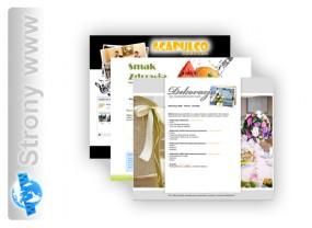 Projektowanie i wdrażanie strony www - AMR STUDIO Maciej Rychter Kościan