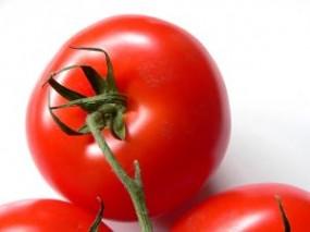 porady dietetyczne przez internet - Poradnia Dietetyczna Dieta dla Ciebie Poznań