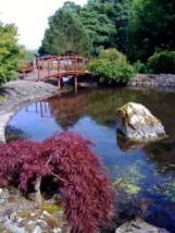 Zakładanie ogrodów - Układanie Kostki Brukowej Max-Bruk 20 lat doświadczenia Luzino