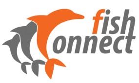 Pozycjonowanie stron www z gwarancją top10 - Fishconnect.pl Ruda Śląska