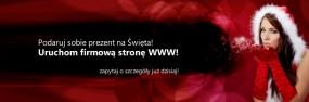 Firmowe strony internetowe - Serio - Usługi informatyczne Kamil Wojciechowski Piekary Śląskie