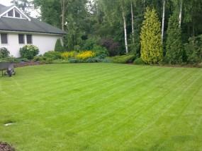 zakładanie trawników - Ogrody Pazio Usługi Ogrodnicze Wołomin