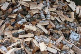 Brzoza drewno opałowe kominkowe - Bh Constans Drewno Opałowe Kleosin