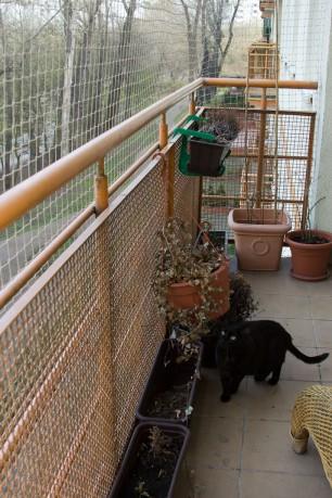 Siatka na balkon dla kota montaż cena