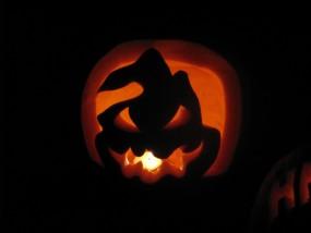 Dynie na Halloween - GASTRO-TOM Tomasz Wodziński Leoncin