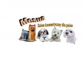 salon dla psów - Salon kosmetyczny dla psów MESUA Swarzędz