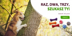 zabawki dla psa - MARKET4U Agnieszka Stanejko Biskupice