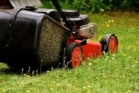 Koszenie trawników - Antoś Usługi Ogrodnicze Rzeszów