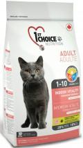 Karma dla kotów niewychodzących z domu - Sklep KOCIMIĘTKA - Karma dla Twojego Psa i Kota Galowice