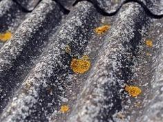 Usuwanie elementów zawierających azbest - PW Ekotop Renata Kazibudzka Częstochowa