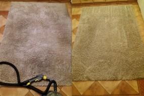 Pranie dywanów i wykładzin - Auto Efekt Końskie