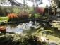 wykonanie elementów wodnych - Zielony Serwis Tarnów