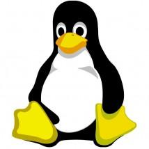 System operacyjny Linux -  bs247  Kazimierz Izdebski Krzesk-Królowa Niwa