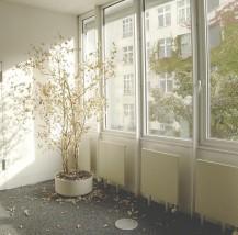 Parowe mycie okien - ŁAM Halina Białek Wałbrzych