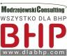 Modrzejewski Consulting