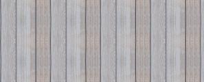 Jak zapobiegać drewnojadom?