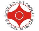 Sosnowiecki Klub Karate