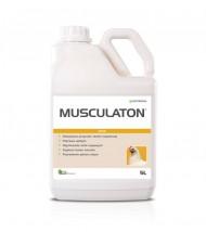 Musculaton - Agromodus Olkusz