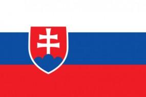 Transport Przeprowadzki Słowacja-Polska-Słowacja - BASMAR Pruszcz Gdański