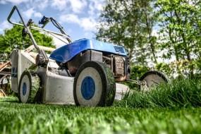 Utrzymanie terenów zielonych, usługi ogrodnicze - Natura & Człowiek Twoje Centrum Ogrodnicze Koziegłowy