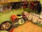 Wszystko dla psów Piekary Śląskie Wszystko dla psów - Piekary Śląskie TOFIK Salon fryzjerski dla psów Wioletta Baryła