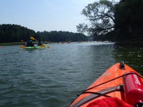 Spływy kajakowe jednodniowe Krutynią - AS-TOUR Spływy kajakowe i kajaki Krutyń