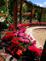 Projektowanie ogrodów - Mateusz Dekoruje Świnoujście