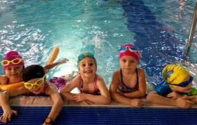 Nauka pływania Kraków - Szkoła Pływania Aligator