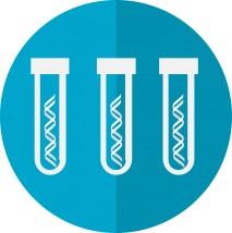 Testy Diagnostyczne - SUNSHINE HEALTHCARE Zakopane