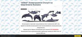 Robienie stron internetowych - Michał Skaskiewicz Działalność handlowo usługowa  nomnizone  Słubice