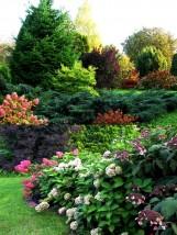 Projektowanie i zakładanie ogrodów - Platan Projekt Sosnowiec