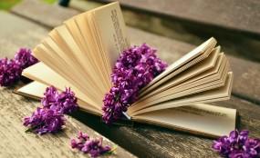 Korekta książek, treści na strony www, dokumentów finansowych itp. - KOREKTORNIA on-line /PHU SMART/ Goleszów