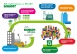 Ekologiczne Klocki BIOBUDDI - Poznajemy Cyferki Pruszków - QElements