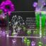 Prezenty dla dziewczyny Drzewko Miłości 3D ♥ na prezent dla dziewczyny - Białystok Statuetki 3D • Kryształy3D.pl • KSK Anna Sawoń