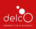 DELCO Perspective & Bussines
