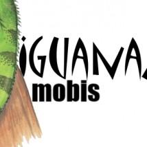 Internetowa strona dla małej firmy - Iguanamobis   Tworzenie stron www Kraków