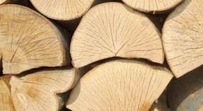 Drewno kominkowe - DAMP Sp. zo.o. Stawiguda