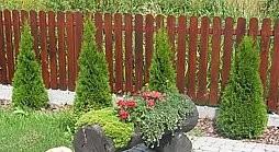 Ładny plot...
