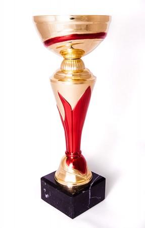 Puchar sportowy...