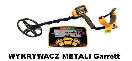 Wykrywacz metali...