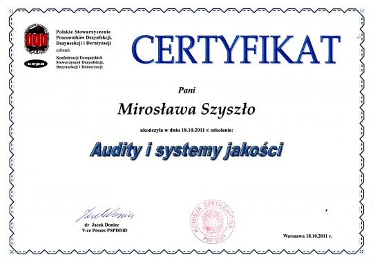Audity i systemy...