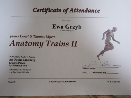 Anatomy Trains I i...